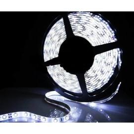 Rolo LED de Tom á Escolha