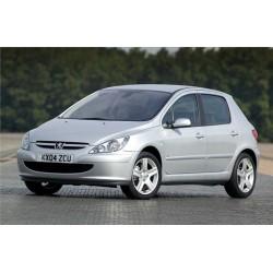 Spoiler / Lip Peugeot 307